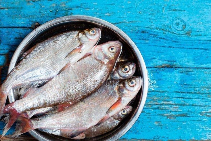 Морская рыба которую не выращивают искусственно