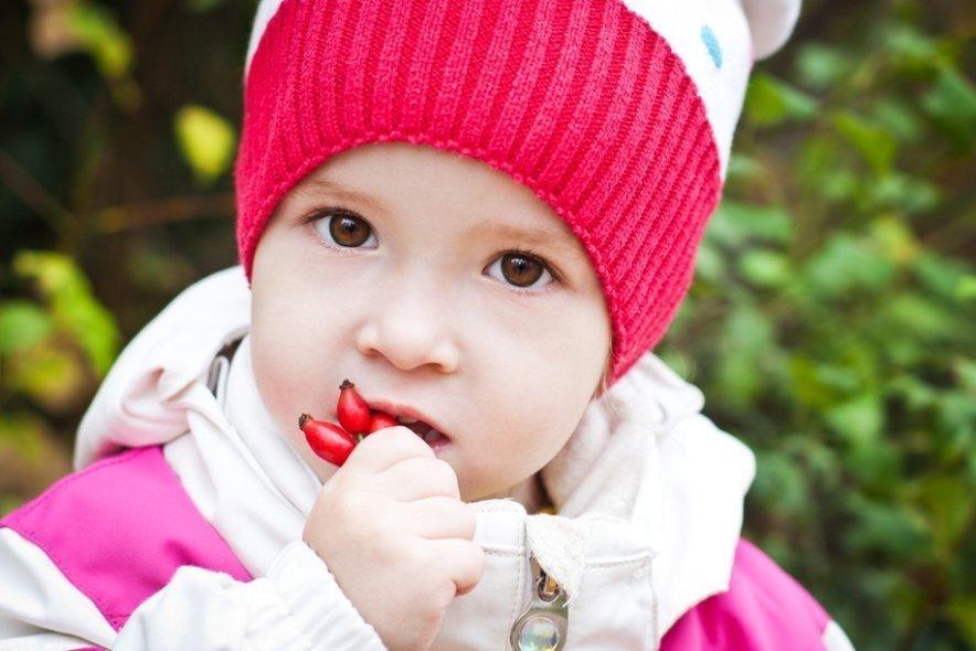 Диета ребенка при орви
