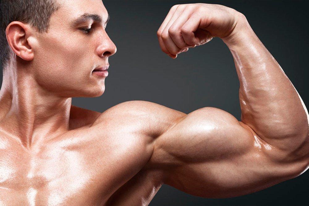 варианты заливки картинки большие мышцы говорить, франко перестает