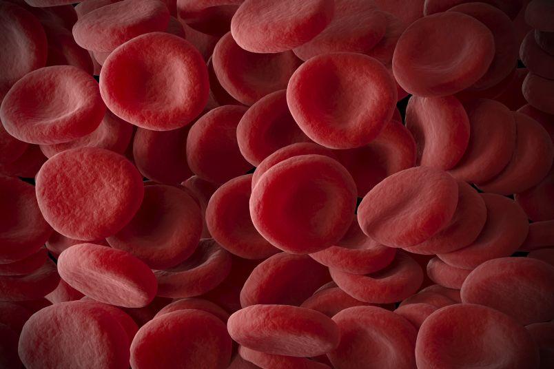 За что отвечает гемоглобин в организме