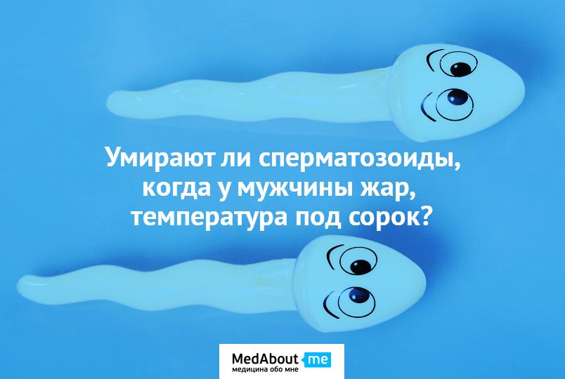 kak-menyaetsya-podvizhnost-spermatozoidov-cherez-chas