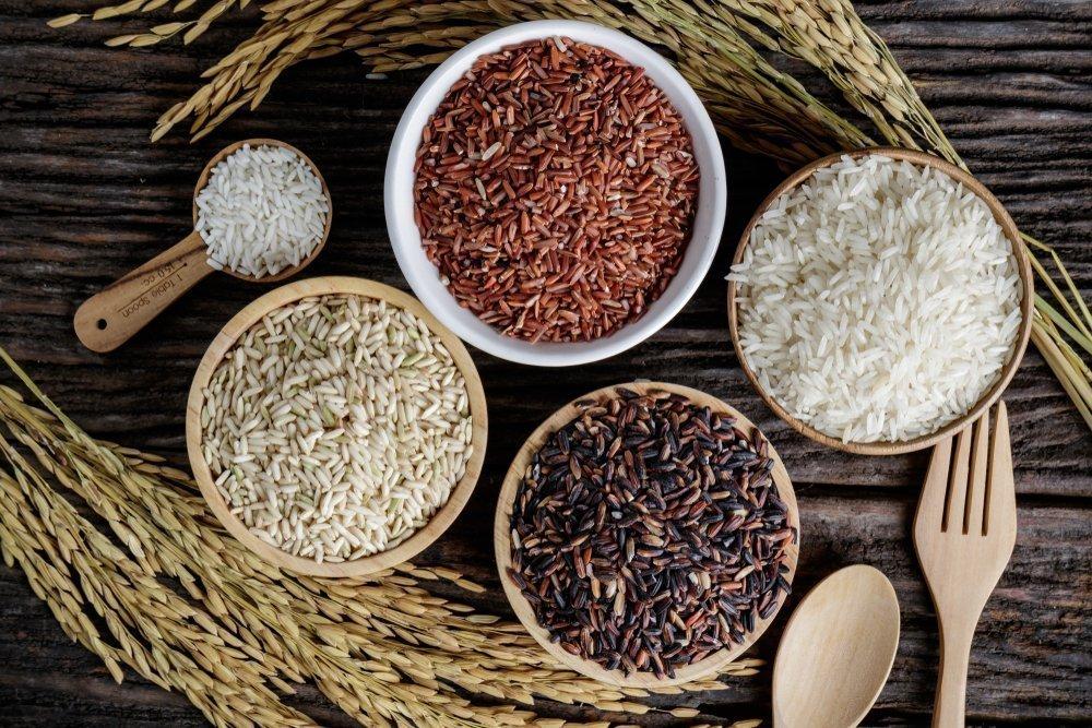 Какой вид риса самый полезный на самом деле: многообразие сортов риса и их особенности || Разновидности риса какой полезнее