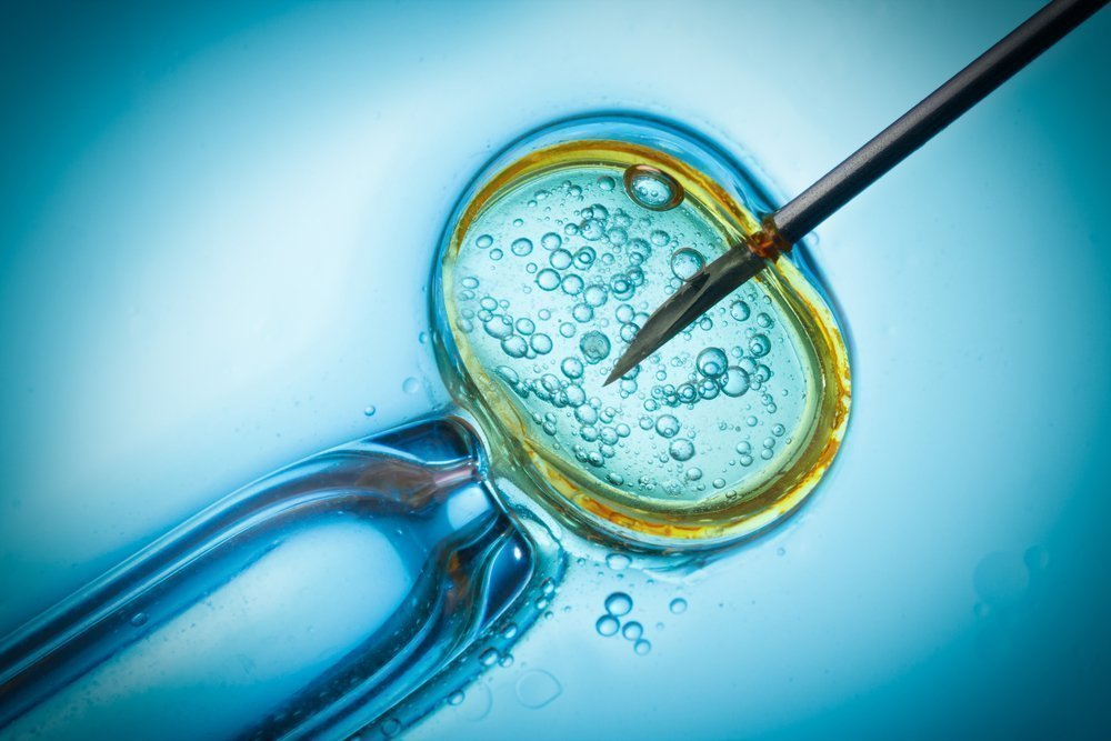 in vitro fertilization the most demanding and least successful procedure in reproductive medicine