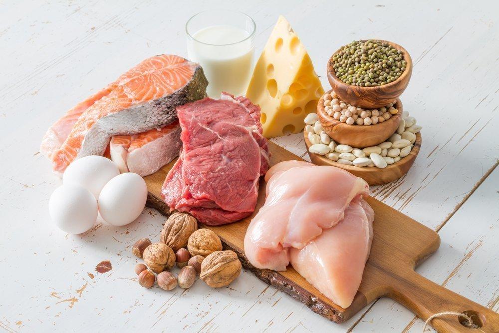 Не ущемляйте себя в продуктах питания, богатых белком