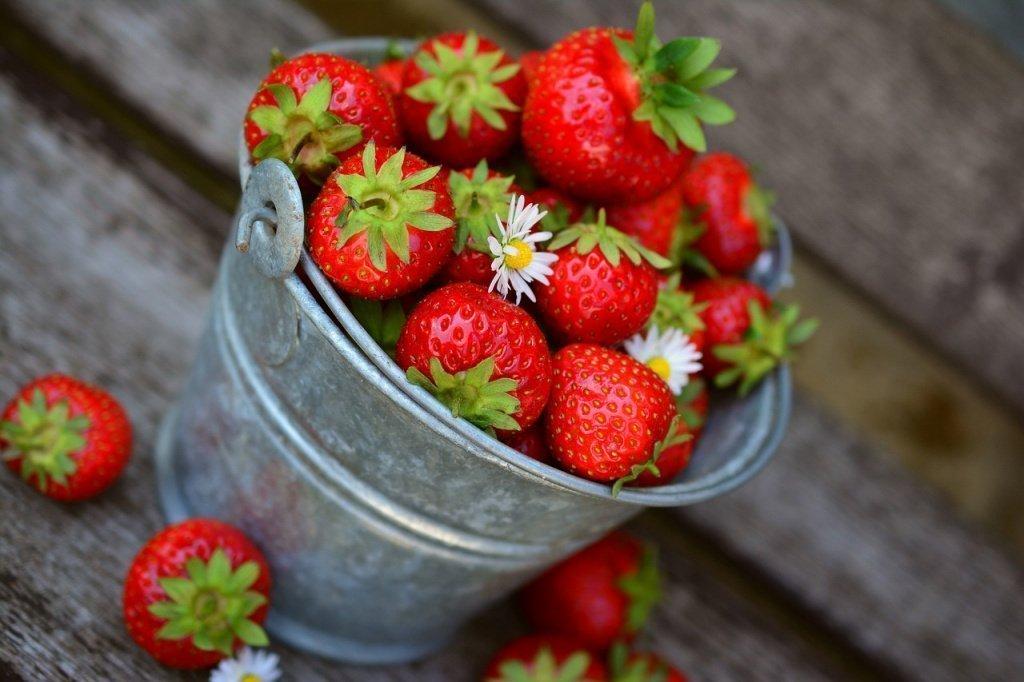 Клубника: полезные свойства ягод и противопоказания
