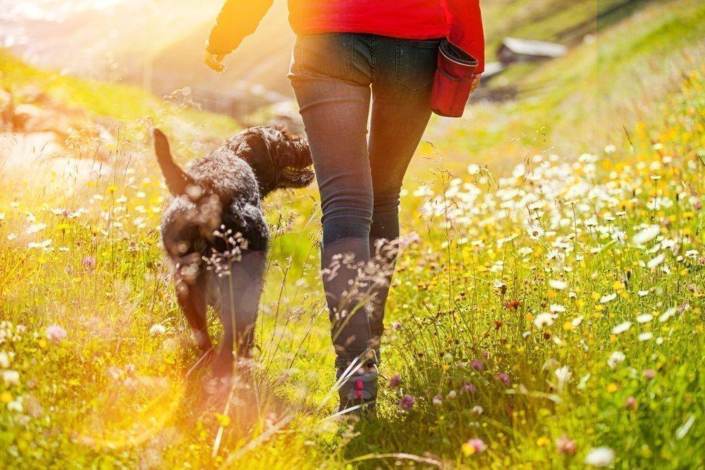 Нюансы ходьбы для создания правильной физической нагрузки