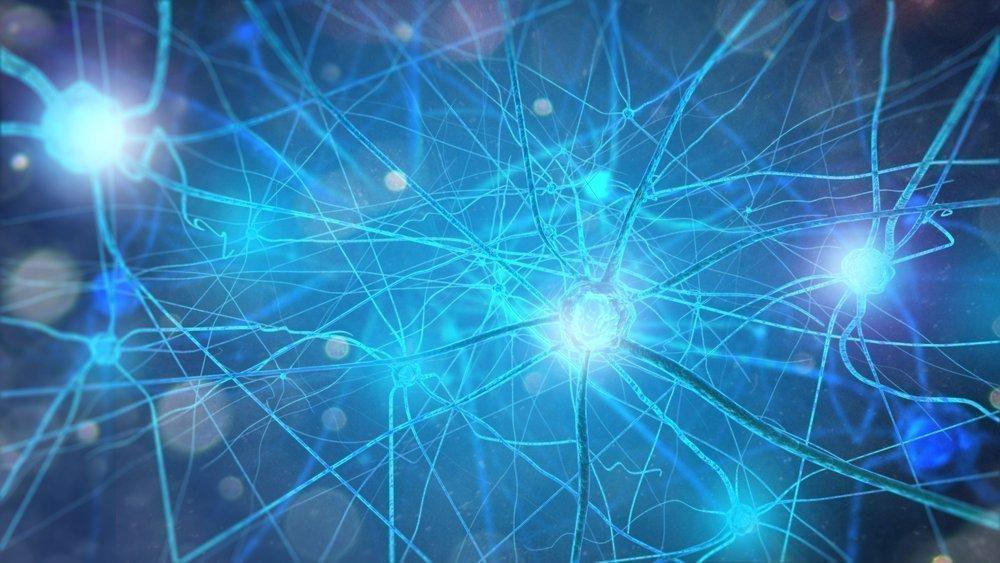 Что такое нерв?
