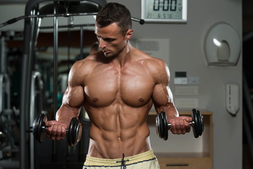 Принцип действия мышц-антагонистов для понимания техники упражнений