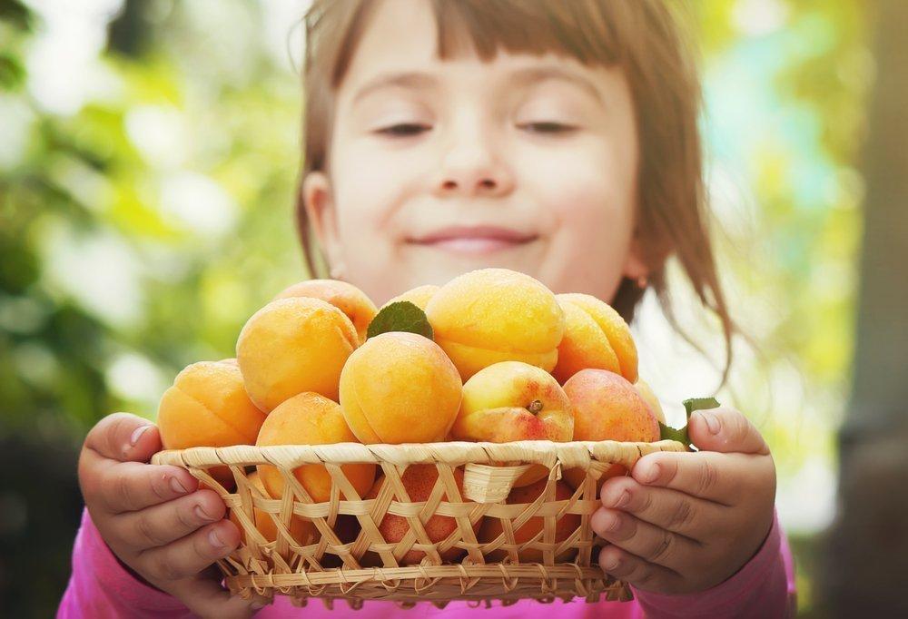 Абрикос: источник витаминов