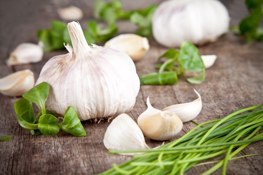 Чем полезен чеснок и лук для детей?