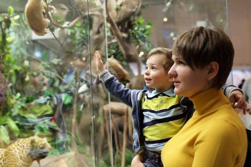 Как вырастить из детей гениев?