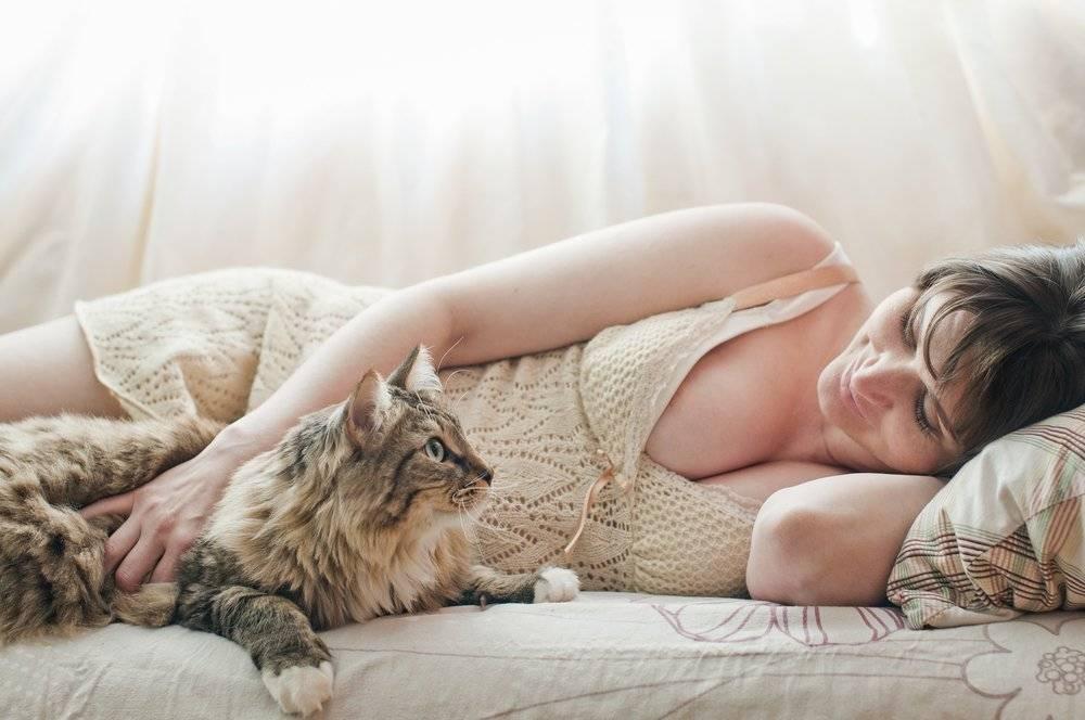 Плюсы кошки: снятие стресса, позитивные эмоции