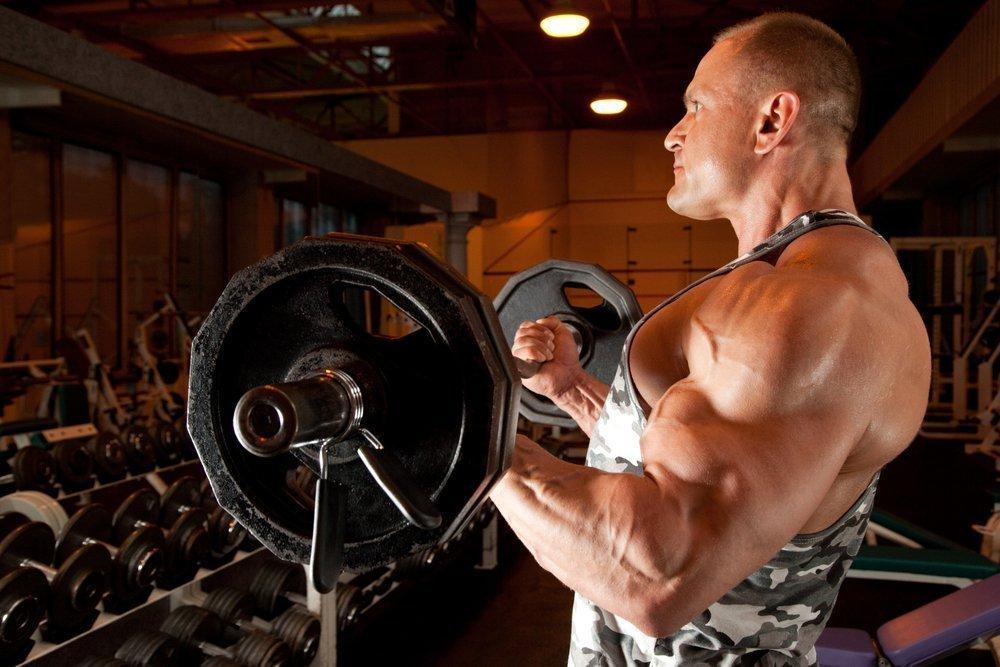 Роль мышц-антагонистов в фитнесе и бодибилдинге