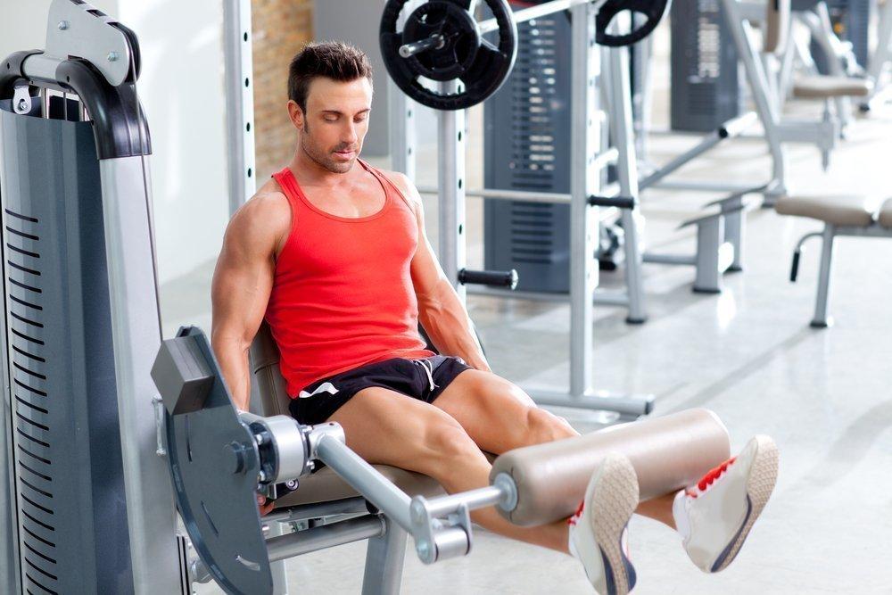 Строение бицепса бедра: тренировки без вреда здоровью