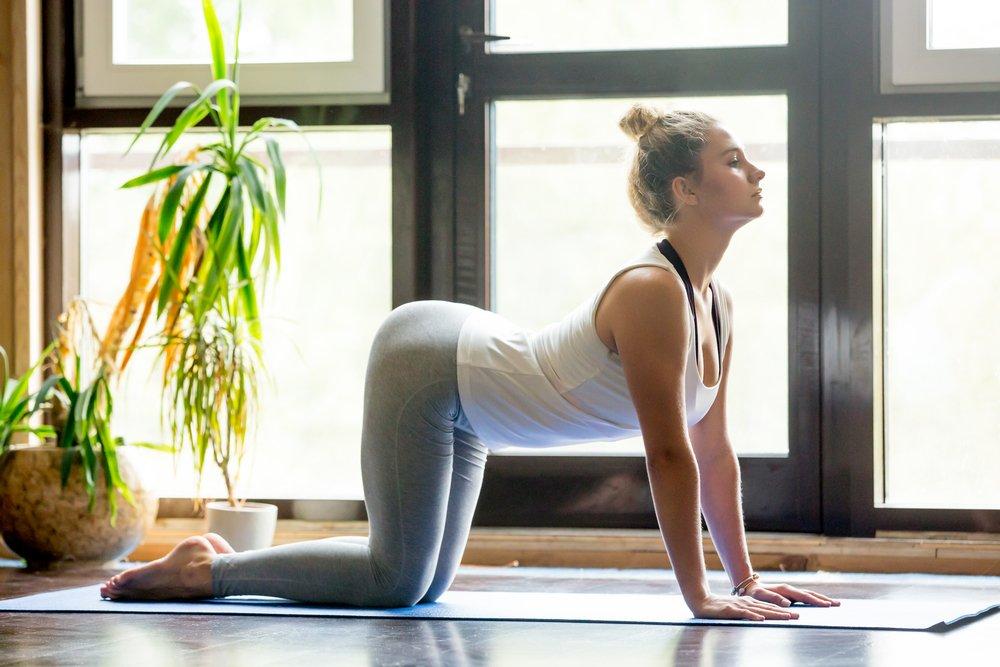 Польза занятий фитнесом, направленных на улучшение осанки