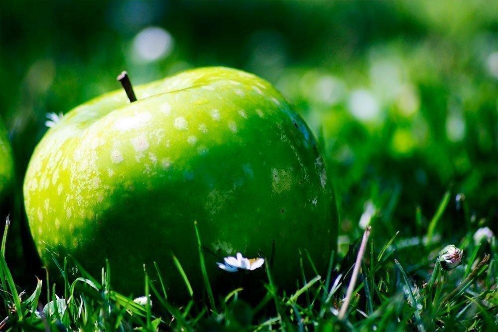Диета без вреда здоровью: польза яблок