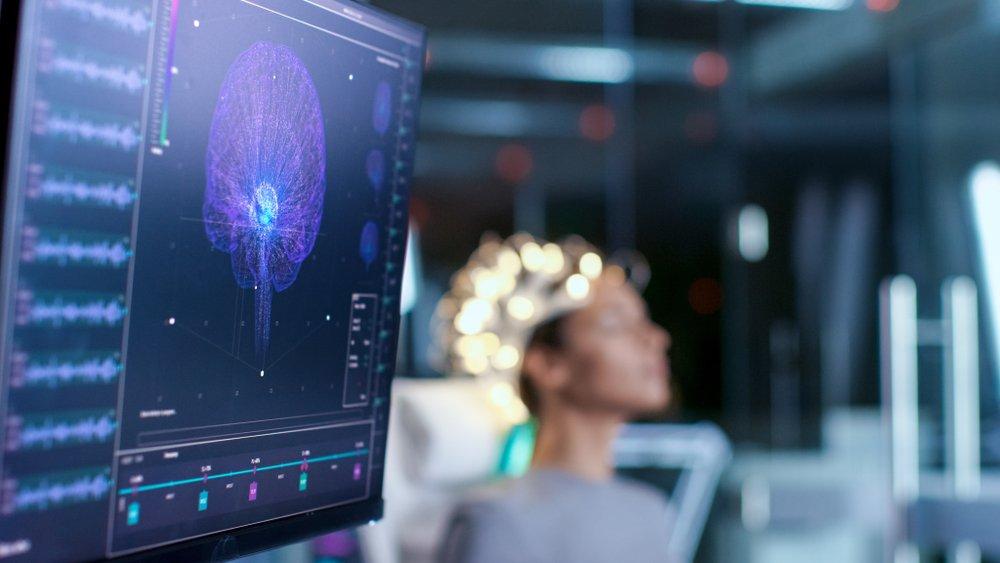 Особенности строения мозга: в чем нуждается этот орган?