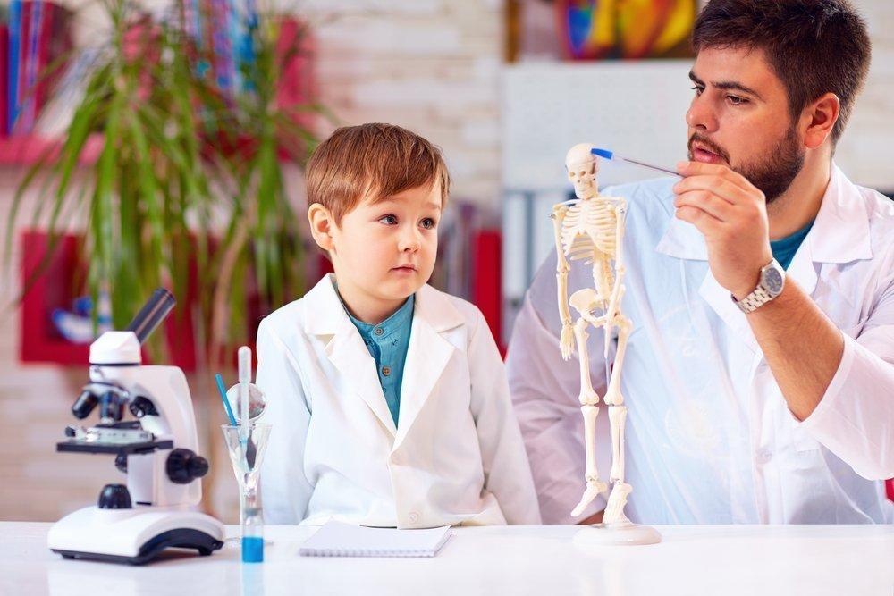 Что мы знаем о костях