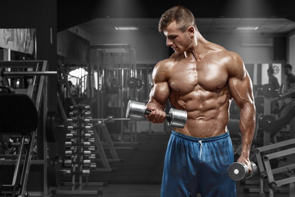 Силовые фитнес-упражнения для бицепса: программа тренировок