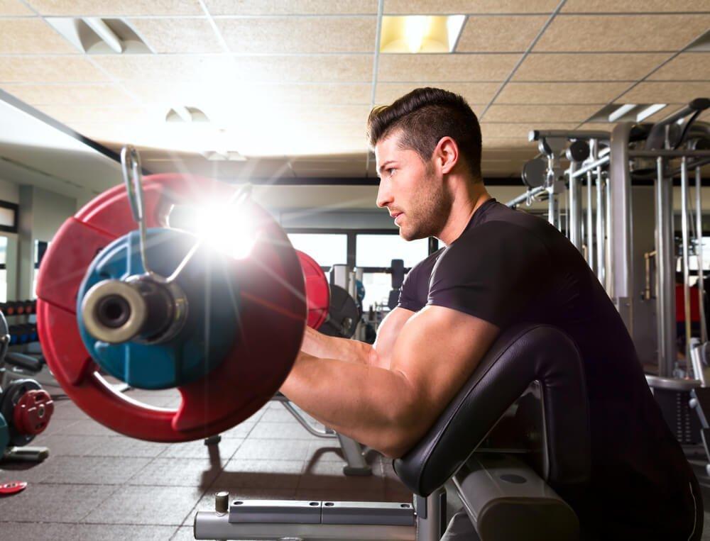 Работа мышц при фитнес-тренировках на скамье Скотта