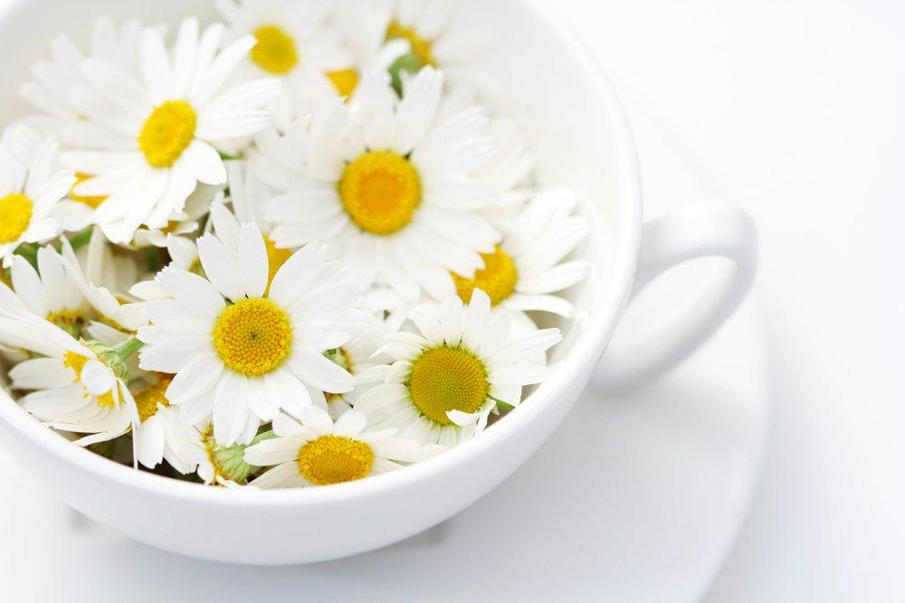 Похудение с простым цветком