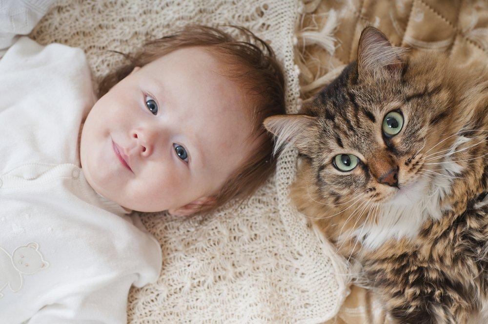 Дети и их здоровье рядом с домашними животными