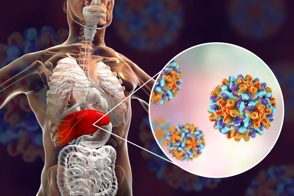 Методы диагностики гепатита С