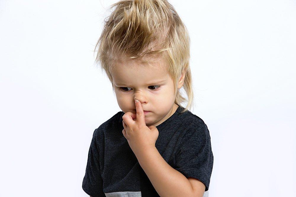 Немного анатомии: строение и функции полости носа у детей