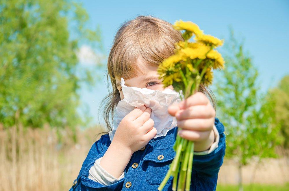 Симптомы летней пыльцевой аллергии