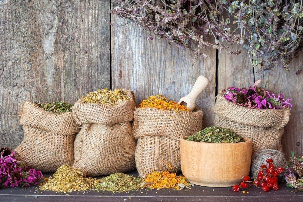 Лечение травами, или фитотерапия