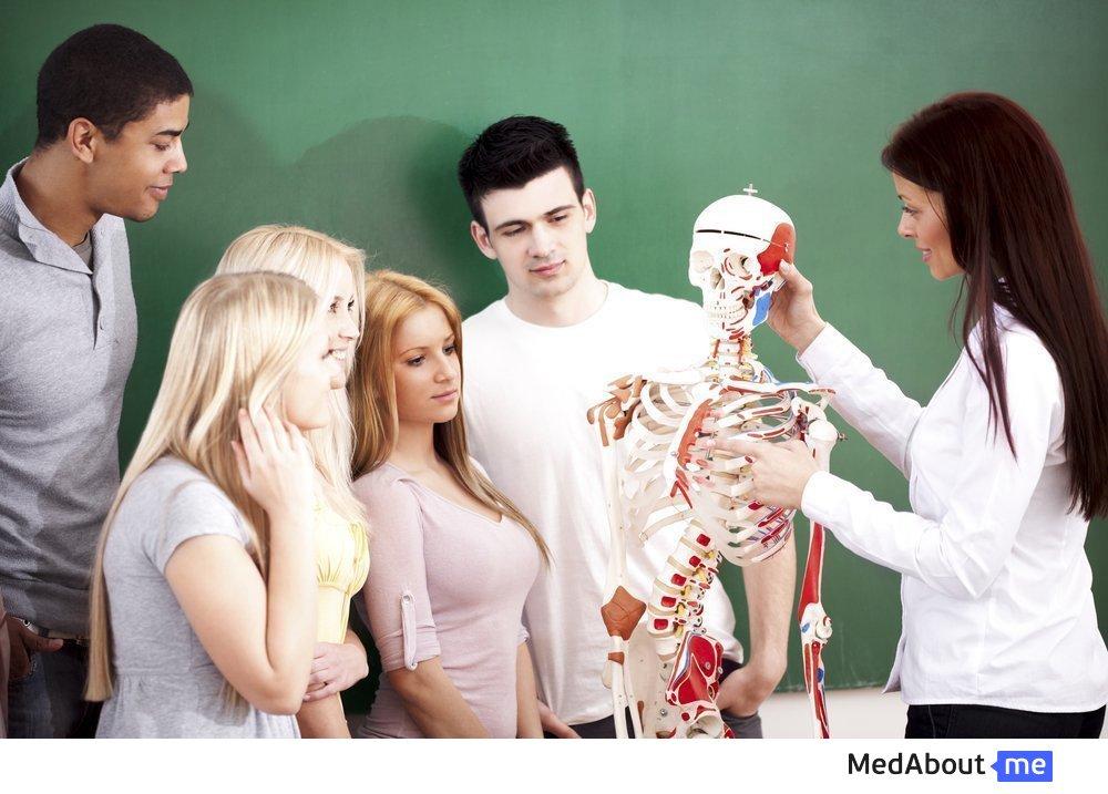 Состав костей