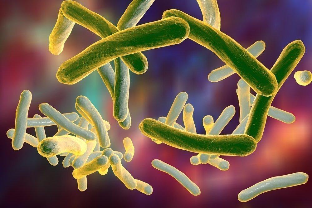 Туберкулез: что нам о нем известно