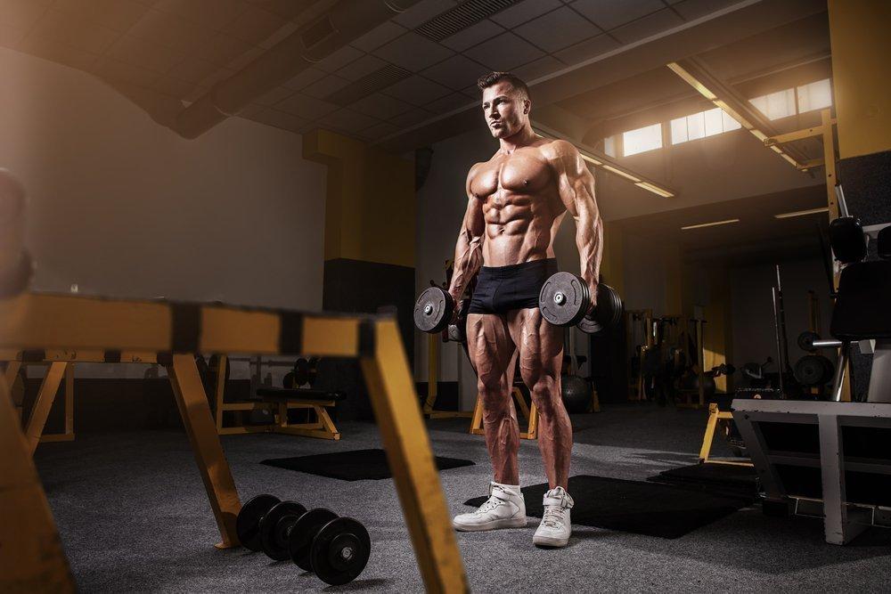 Основы силовых фитнес-тренировок