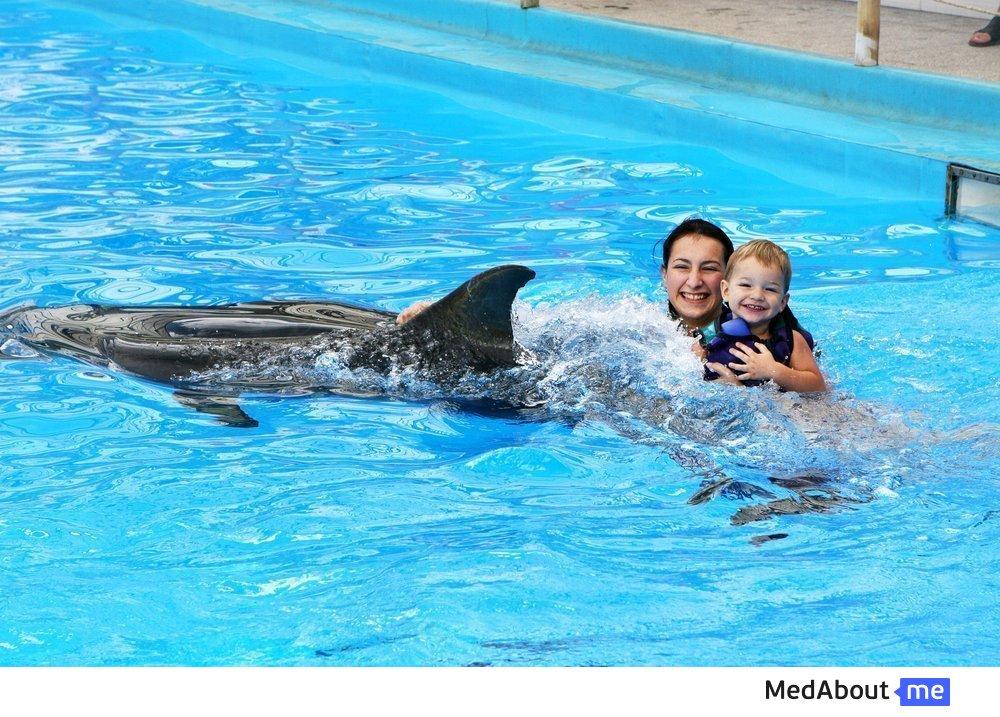 Анималотерапия: дельфины, их лечебные свойства