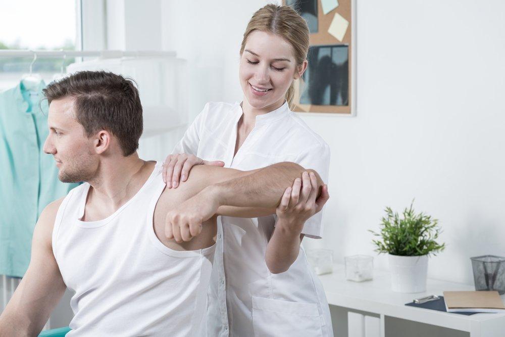 Строение и функции основных суставов человека