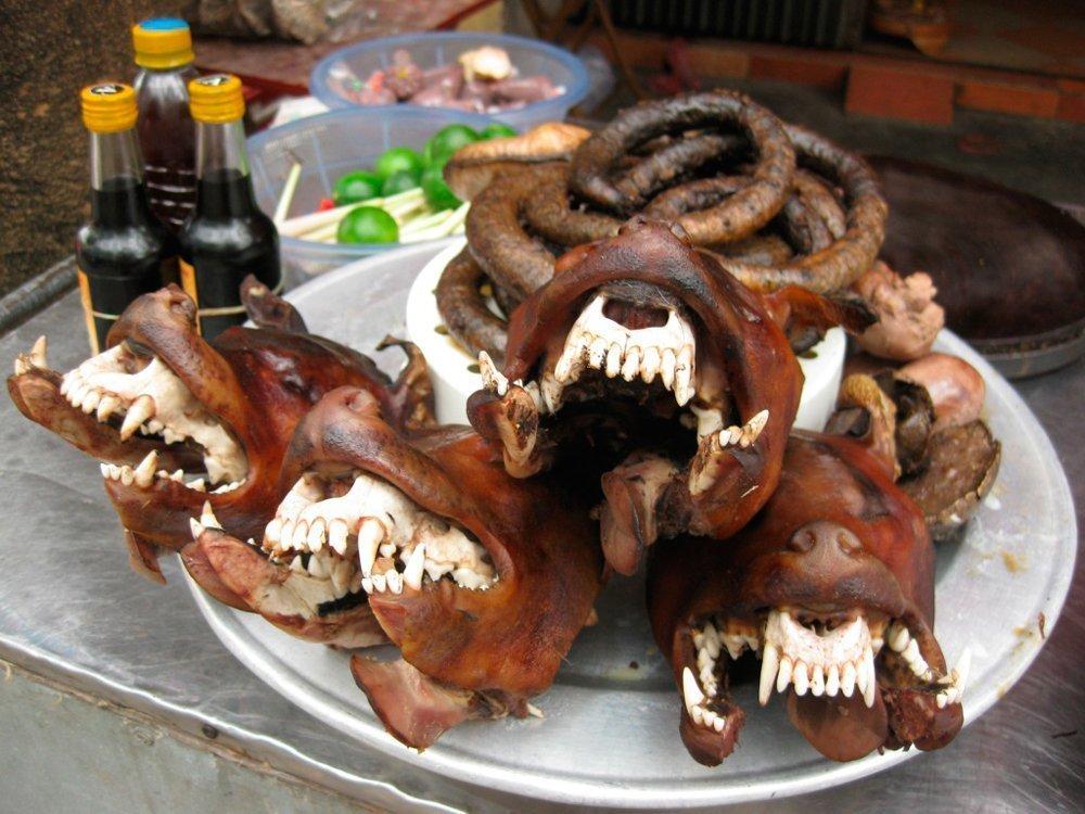купить собачье мясо в кургане
