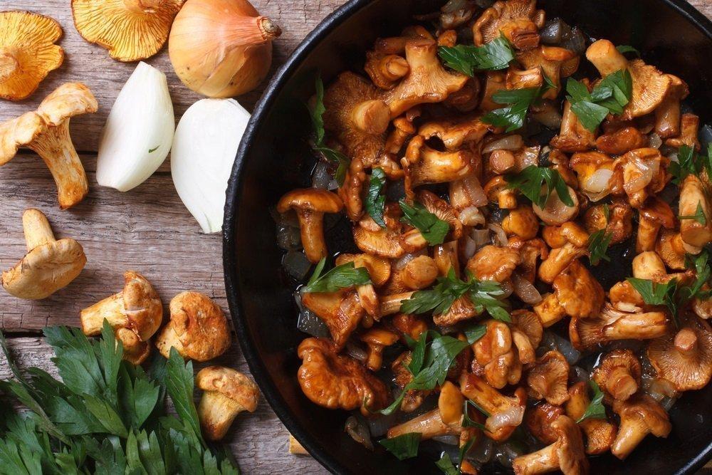 Грибная полянка, или грибы едят только свежими