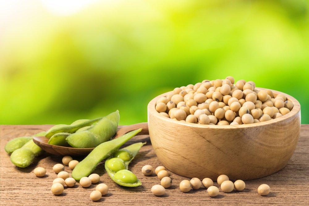 Обилие соевых продуктов в питании