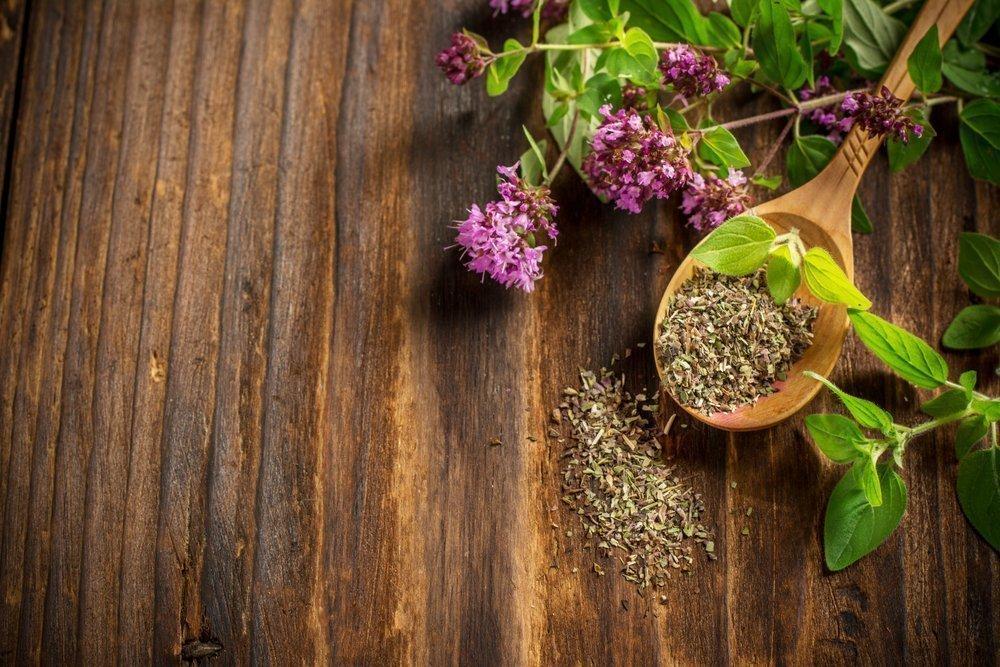 Возможно ли похудение на траве душица?