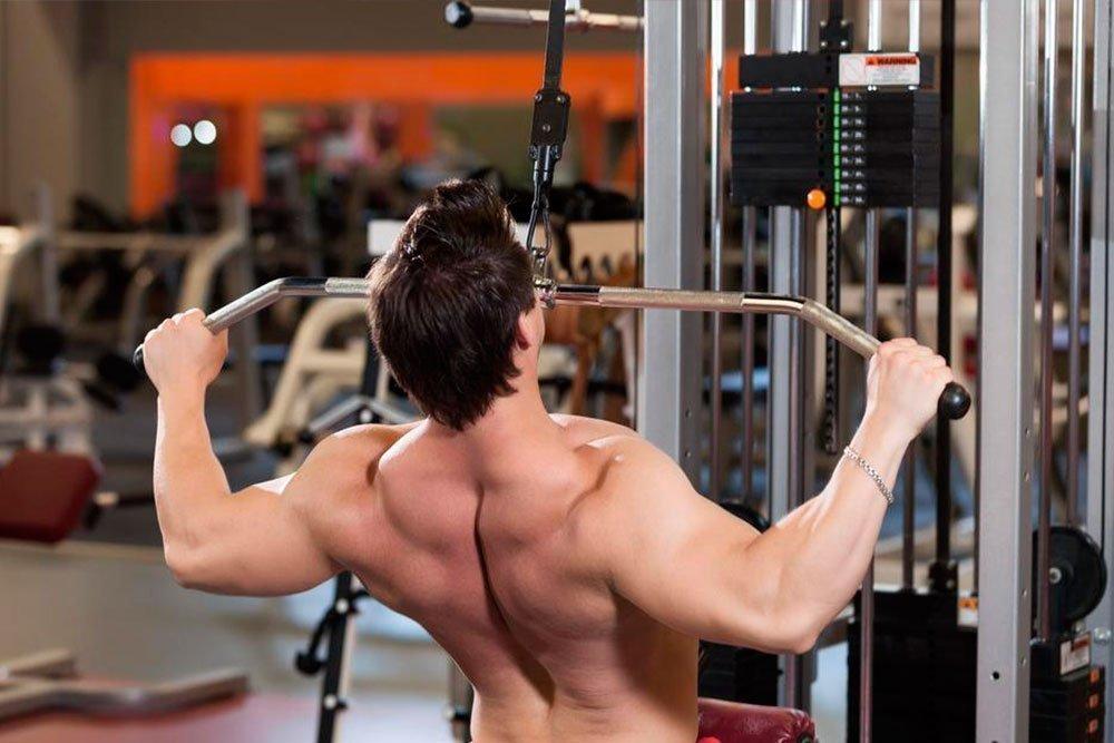 На чем держится здоровье спины? Спинная мускулатура вдоль и поперек