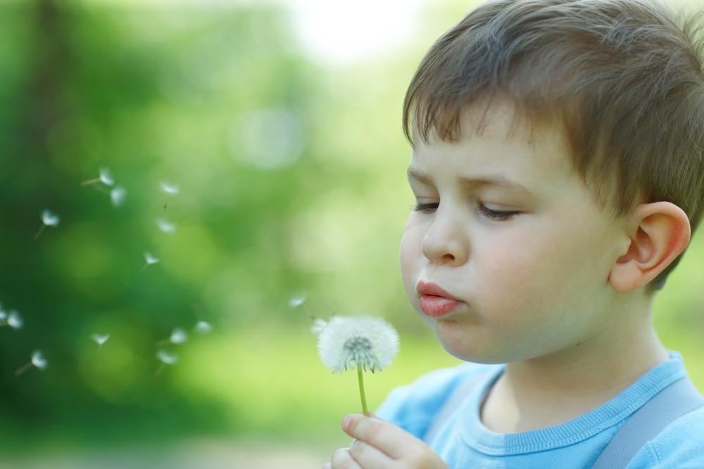 Лечение и профилактика поллиноза у детей