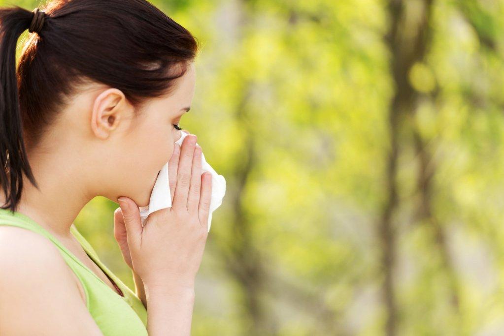 Причины поллиноза и растения, вызывающие аллергию
