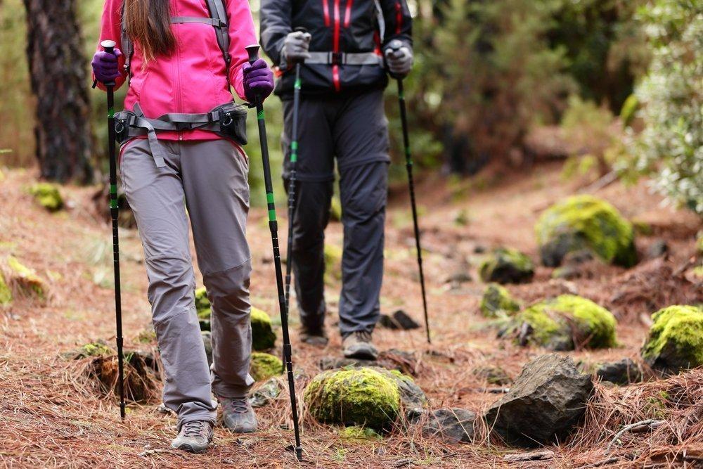 Польза физической нагрузки в виде скандинавской ходьбы