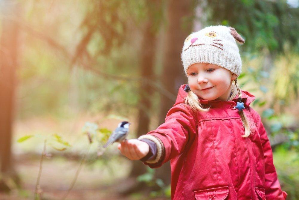Болезни, передаваемые птицами: инфекции, аллергия, паразиты
