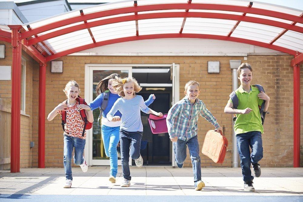 Преимущества триместров и развитие детей