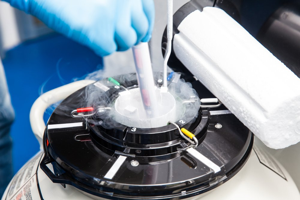 Заморозка эмбрионов как основной риск