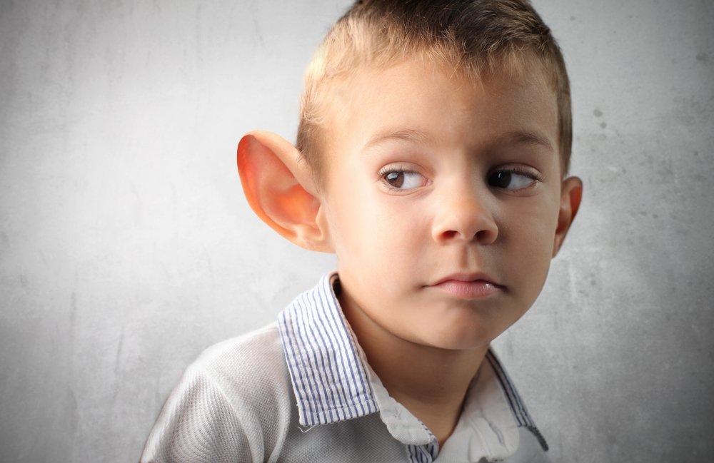 Форма ушных раковин: от чего она зависит?