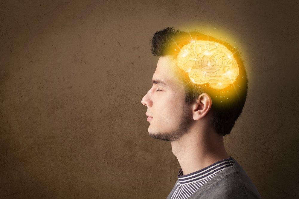 Мозг — главный пункт управления
