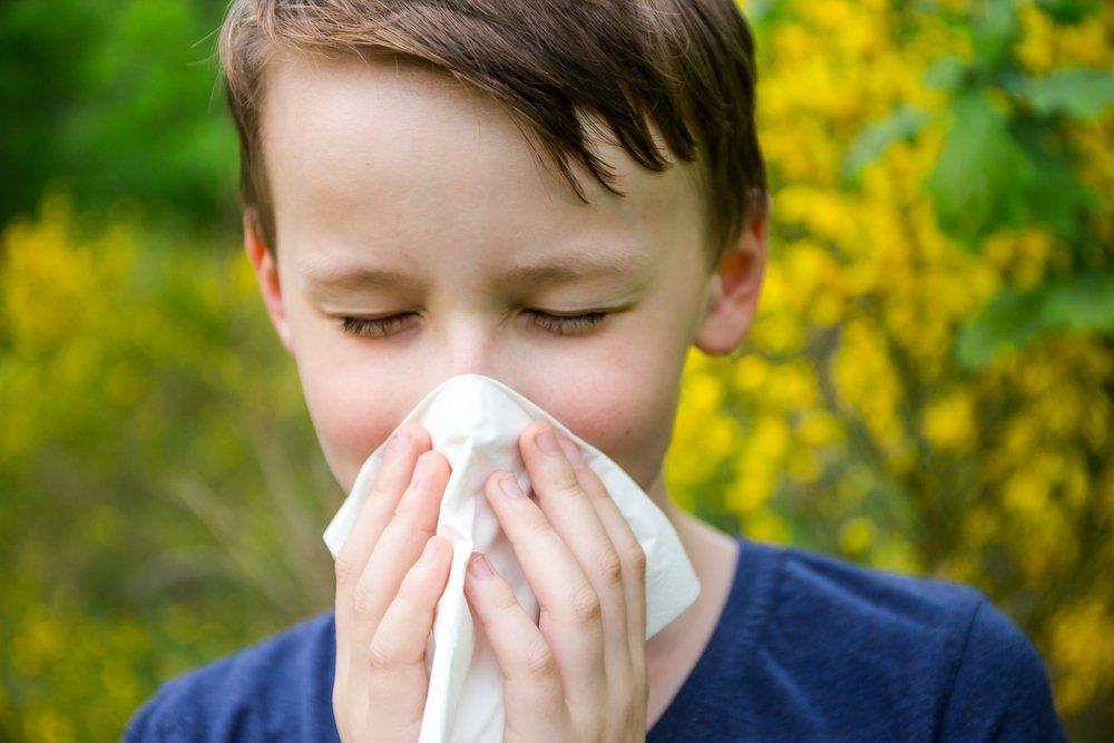 Заболевание «поллиноз» у детей