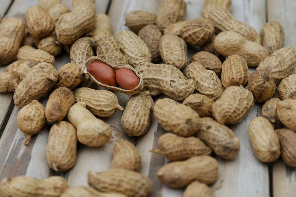 Правильное питание: рецепты блюд с арахисом